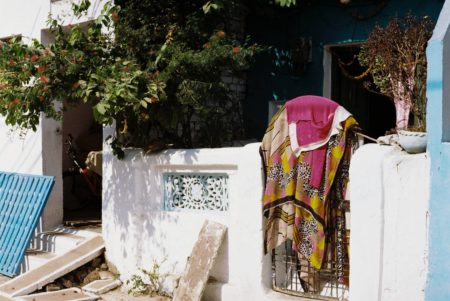 Lindsay Interview | Caught on Film: Max Lieberman Documents a Colourful Jabalpur