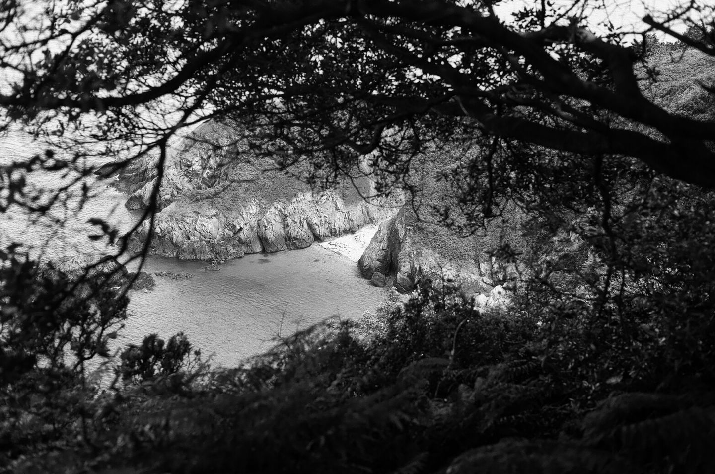 Lindsay | A Photographic History in Jersey's Rock Faces | Photo by Clare Rae for Lindsay